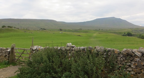 Gate-heading-towards-Ingleborough