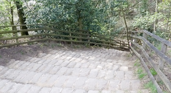 Stairs leading to wooden footbridge