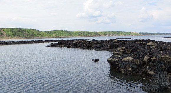 Rocky-area-for-lobsters-scarborough