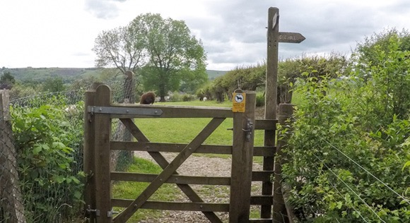 Gate leading to Lose Hill