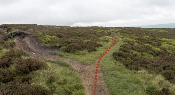 Path from Ringing Roger