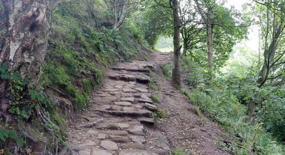 Path just after steps