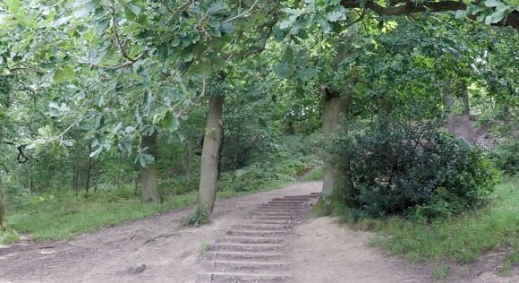 Steps at the start of Roseberry Topping