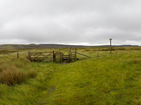 Stile and gate