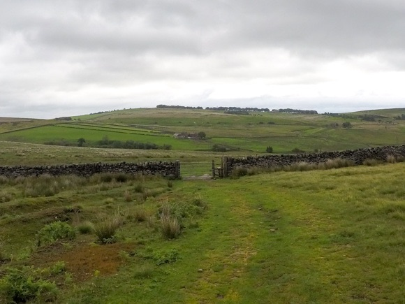 grassed route to stange edge
