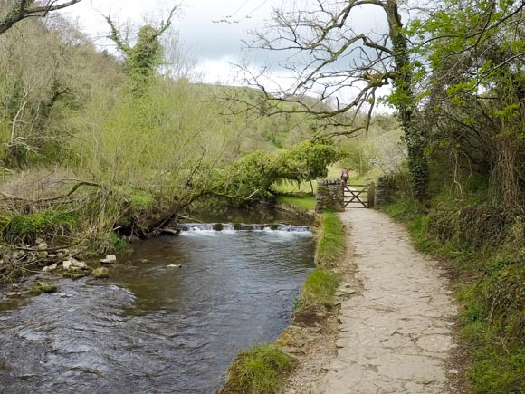 Dovedale to Milldale Walk 13