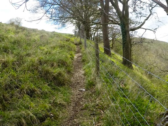 Dovedale to Milldale Walk 19
