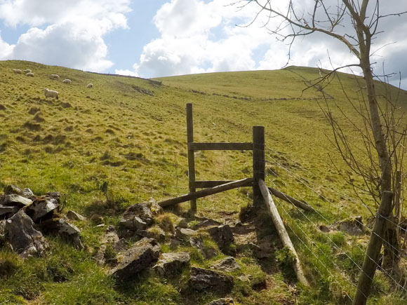 Dovedale to Milldale Walk 20