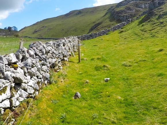 Dovedale to Milldale Walk 42
