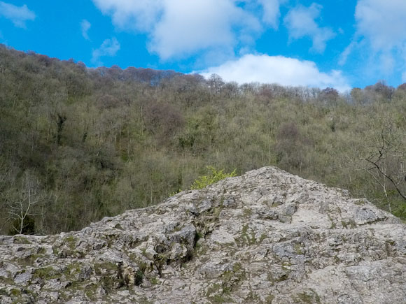 Dovedale to Milldale Walk 6