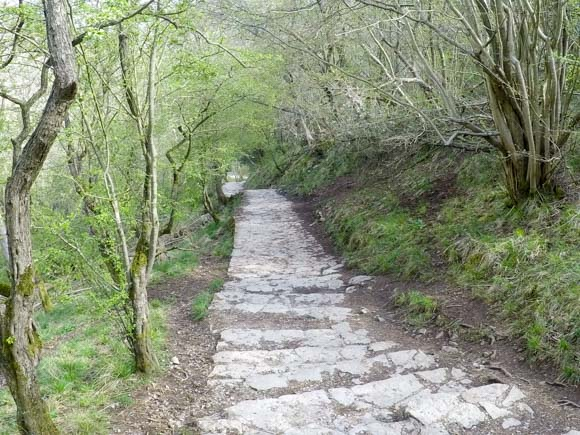 Dovedale to Milldale Walk 7