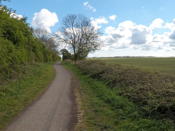 Hull to Hornsea walk or cycle 5