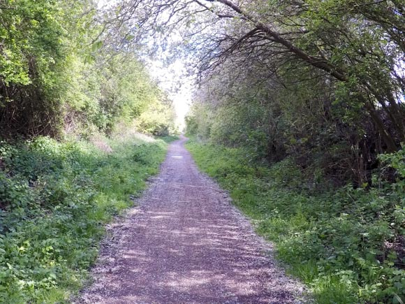 Hull to Hornsea walk or cycle 9