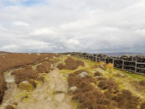 Ilkley Moor Cow and Calf and the Twelve Apostles 46